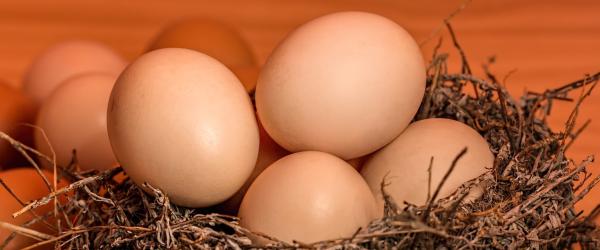 beneficios-nutricionales-huevo